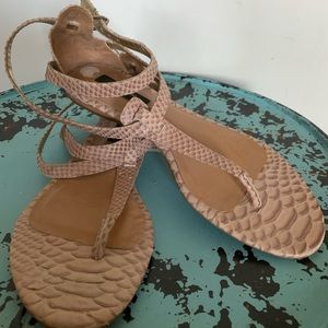Ann Taylor sandals...Very Tres' Chic!